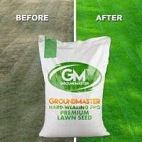 GroundMaster best grass seed