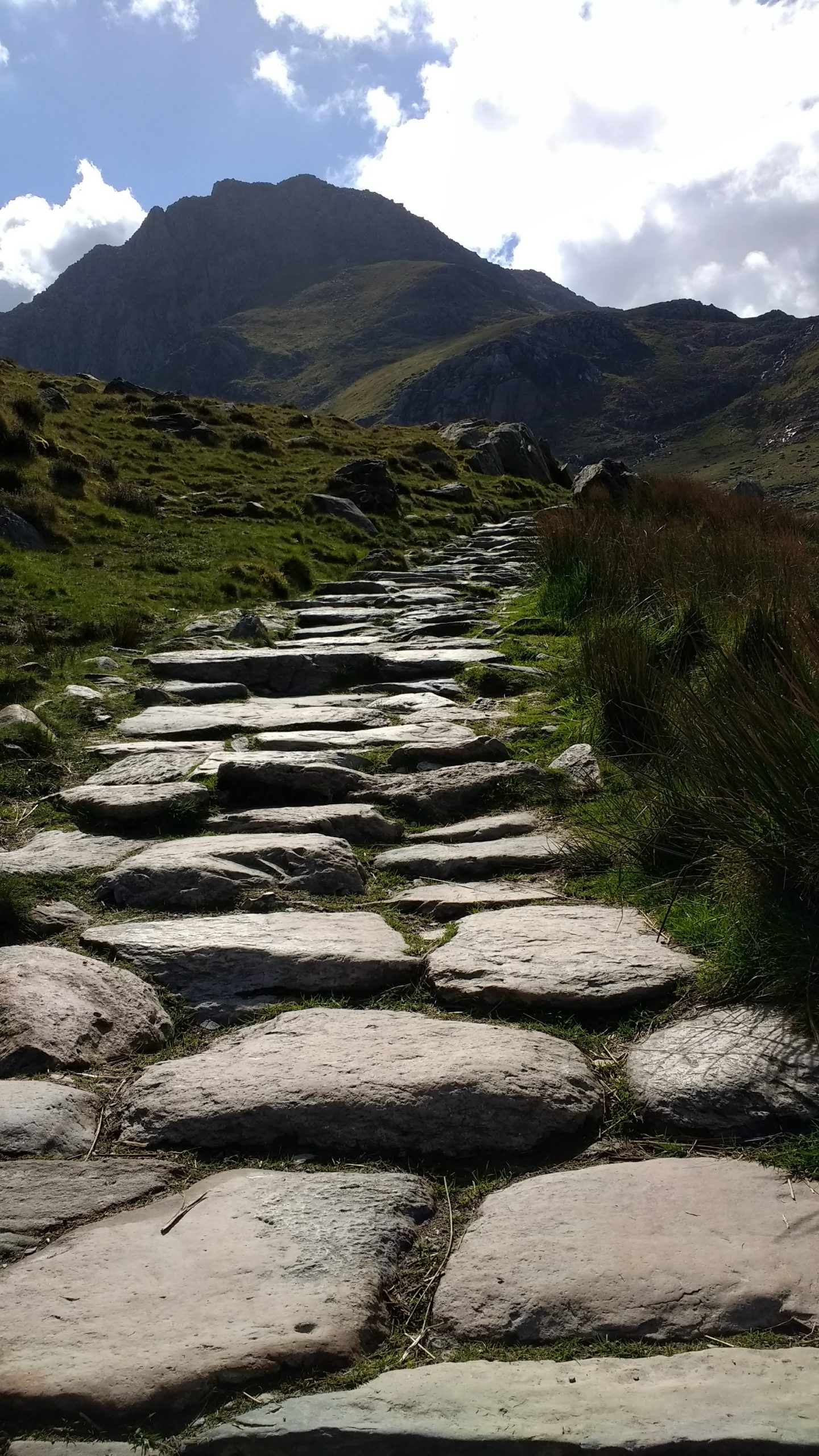 Stone Path in the Glyderau