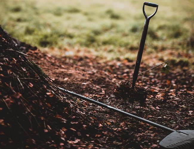 Compost and tools