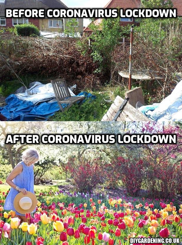 coronavirus lockdown garden meme