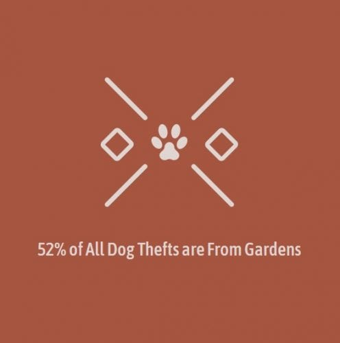 Dog thefts from gardens
