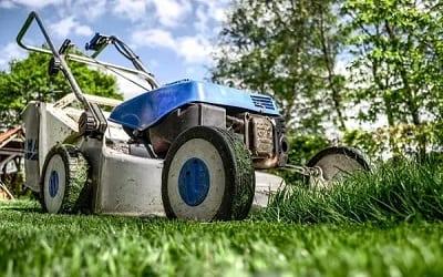 Lawn care FAQs