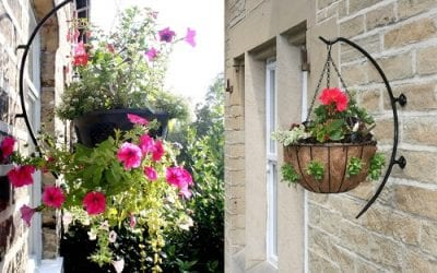 Hanging Basket Compost – This is the Best Compost