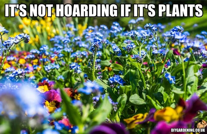 It's not hoarding if it's plants free meme