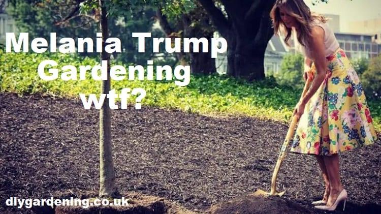 Melania Trump gardening meme