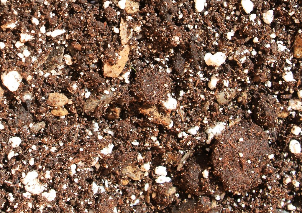 Closeup showing grit, compost and perlite