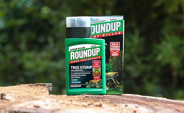Tree stump killer by Roundup